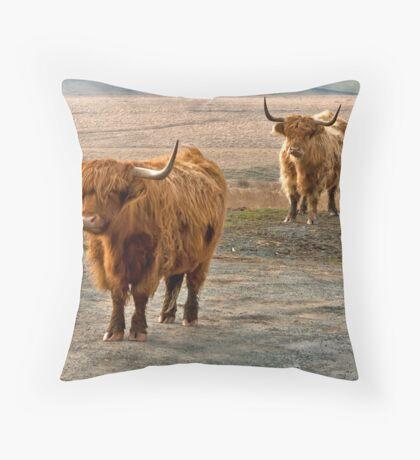 Beautiful Highlanders Throw Pillow