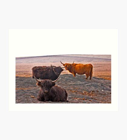 Highlanders on the Hills Art Print