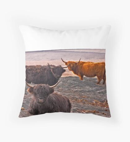 Highlanders on the Hills Throw Pillow