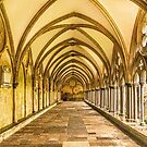 Vaulted Corridor by Dave Hare