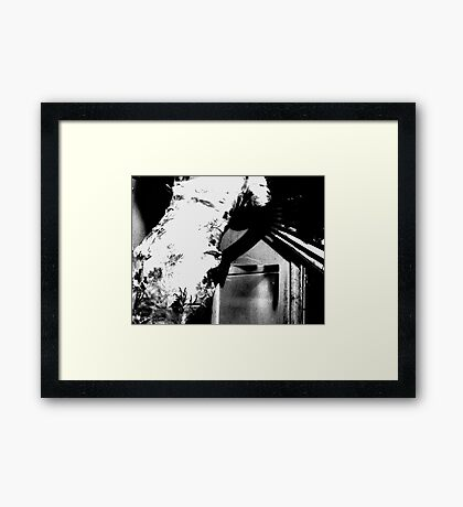 Chinese Laundry Framed Print