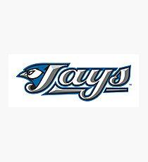 toronto jays logo Photographic Print