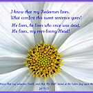 I Know That My Redeemer Lives by BlueMoonRose