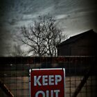 Keep Out! by Nikki Smith (Brown)
