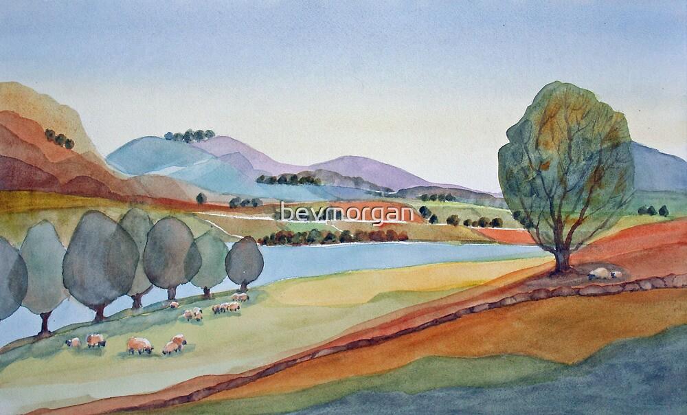 Valley Sheep Farm by bevmorgan