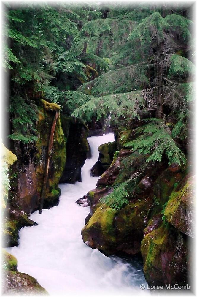 Avalanche Falls Creek by © Loree McComb
