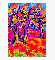 Lámina fotográfica Tres árboles de olmo