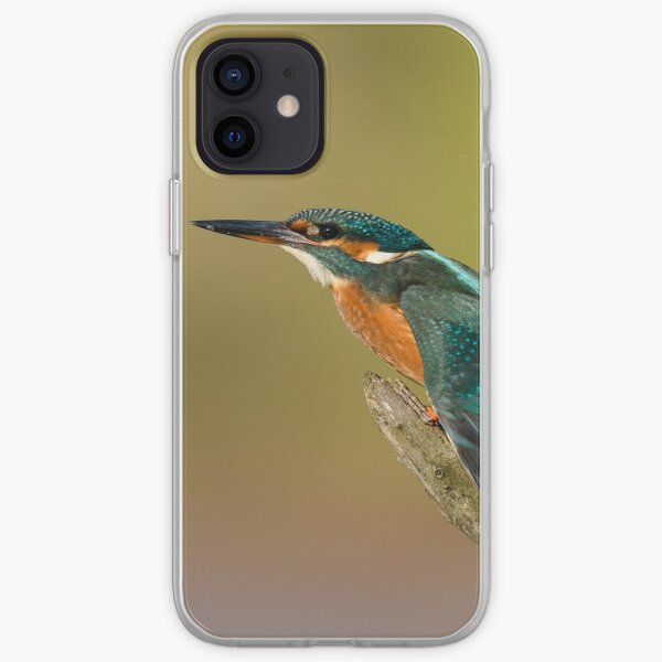 Kingfisher perched on a branch with wings outstretched iPhone Soft Case