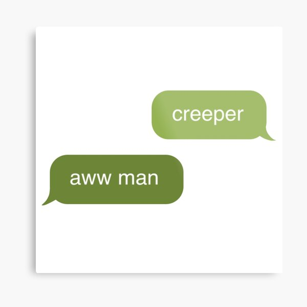Minecraft creeper aww man Metal Print