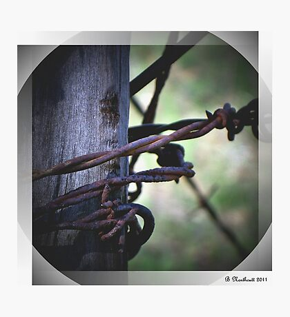 Don't Fence Me In - Barbed wire on corner post Photographic Print