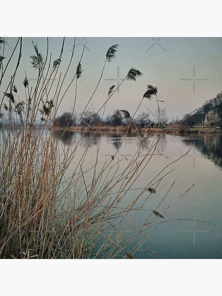 River side in Krakow by jameschaos