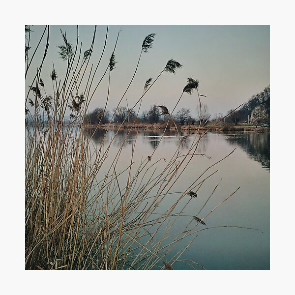 River side in Krakow Photographic Print