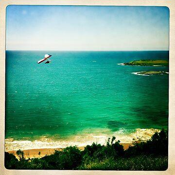 Hang Gliding  by Marita