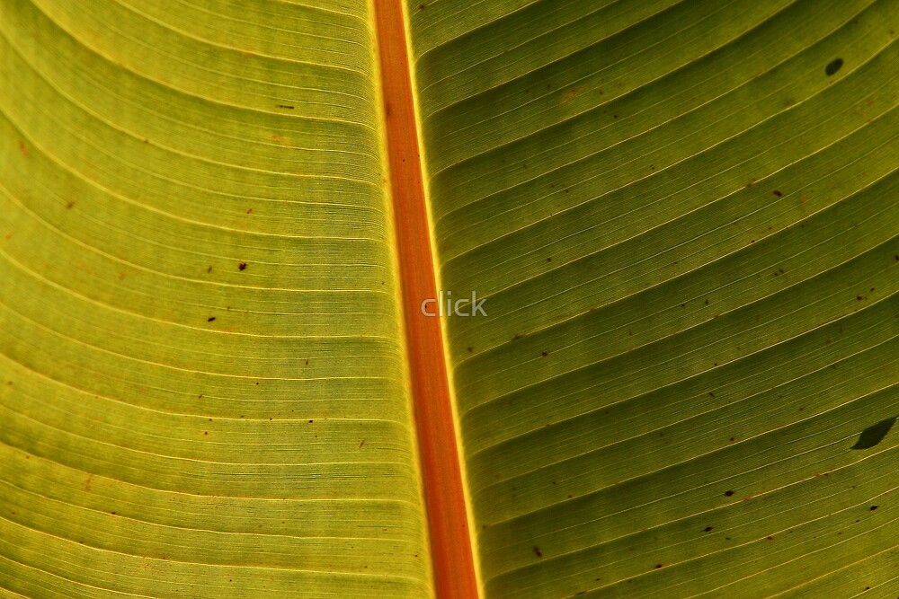 Leaf by click