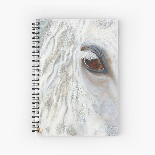 The Phantom Spiral Notebook