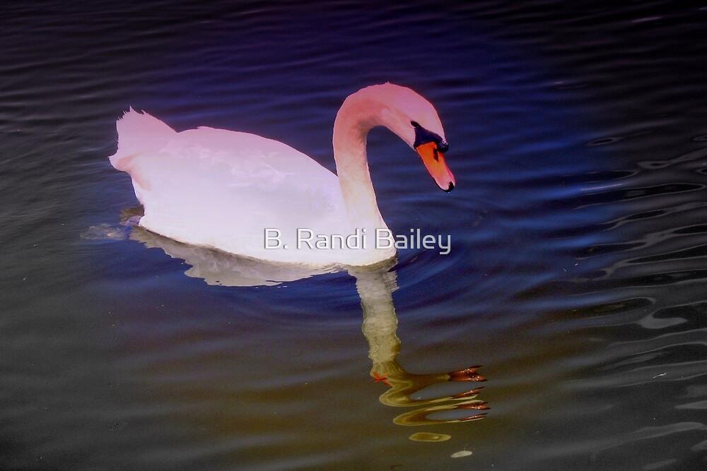 Swan mirror by ♥⊱ B. Randi Bailey