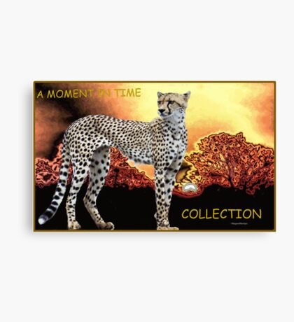 A MOMENT IN TIME - THE CHEETAH COLLECTION Canvas Print