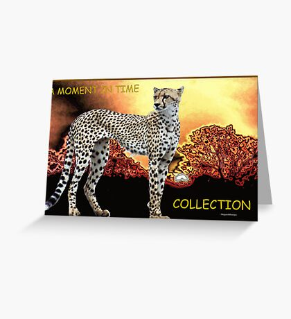 A MOMENT IN TIME - THE CHEETAH COLLECTION Greeting Card