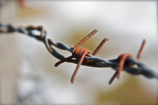 Wired up by Ben Bugarach