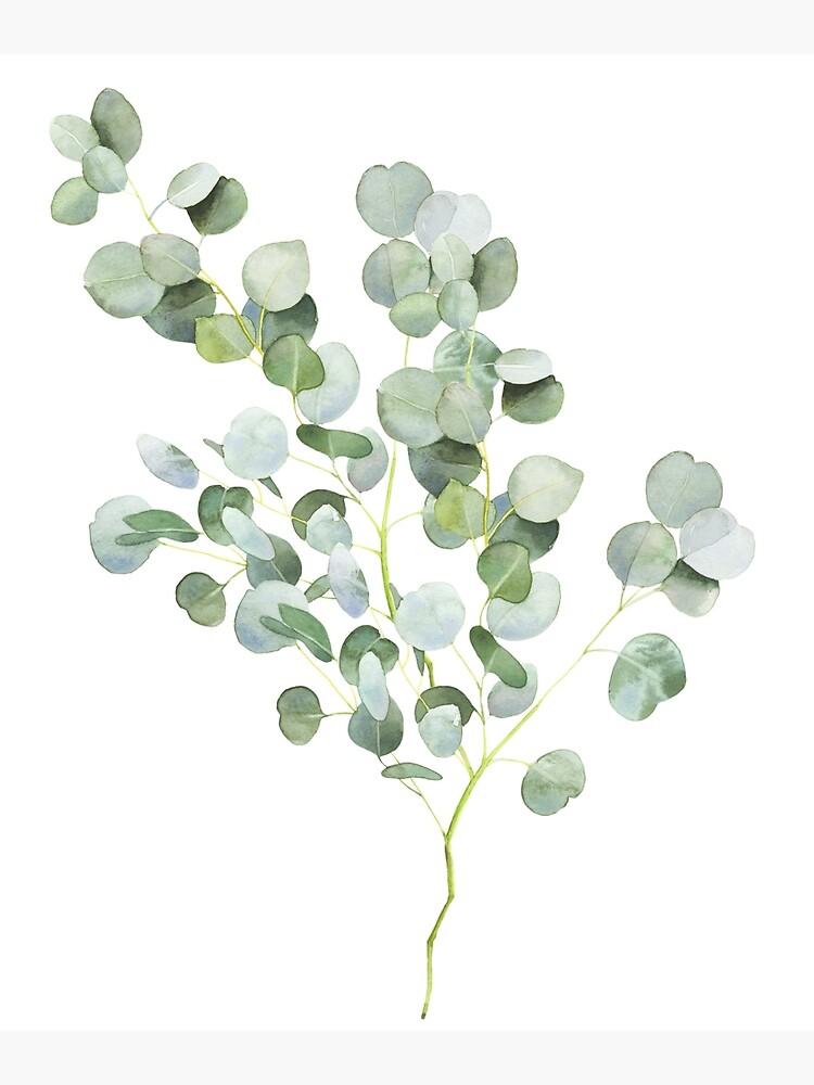 Australian Eucalyptus Twig Watercolor by ArtLab9