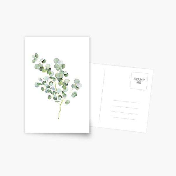 Aquarelle de Brindille d'Eucalyptus d'Australie Carte postale