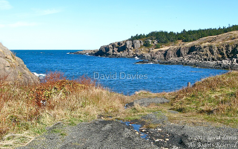 Beautiful Cove by David Davies