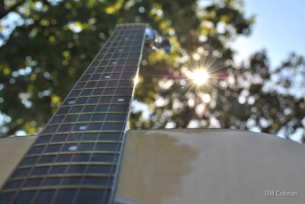 Heaven's Instrument by Bill Colman