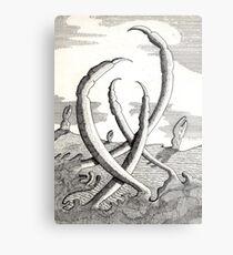 161 - CLAWS VEGETATION - DAVE EDWARDS - INK - 1988 Metal Print