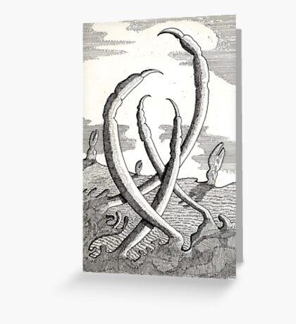 161 - CLAWS VEGETATION - DAVE EDWARDS - INK - 1988 Greeting Card