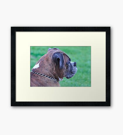 Profile of Tyson Framed Print