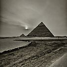 faded into Black and white by Hany  Kamel