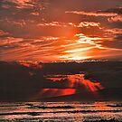 Hawaiian Sunset by wilkor