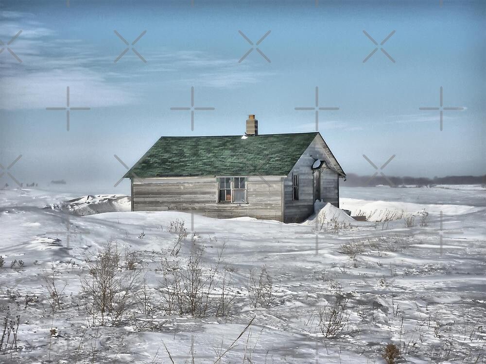Little House On the Prairie by Vickie Emms