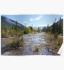 Creek runs through it  Poster