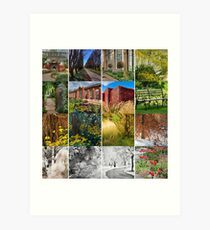 All Glorious Gardens Group Launch! Art Print