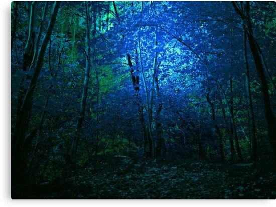 BLUE WOODS by leonie7