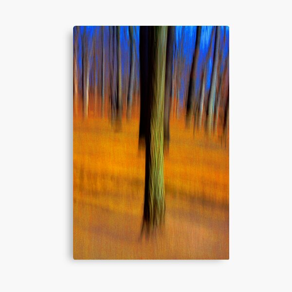 An Early Spring Afternoon Canvas Print