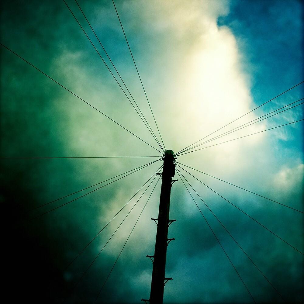 Telegraph pole by Tony Day