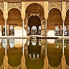 Reflections of the Partal Palace by Stephen Knowles