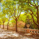 a beautiful garden in the city. lisbon by terezadelpilar ~ art & architecture