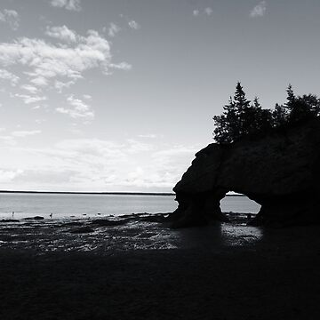 Hopewell Rocks by Richards