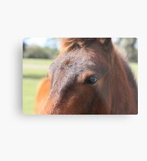 The Cutest Little Cowlick Metal Print