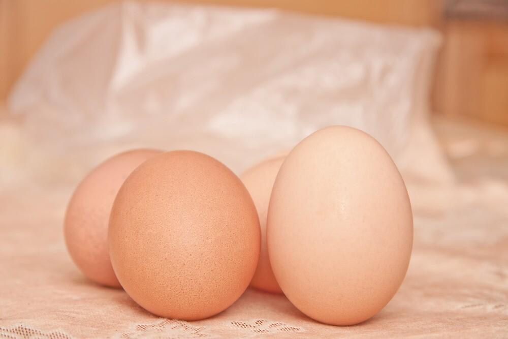 fresh chicken eggs. by rajeshbac