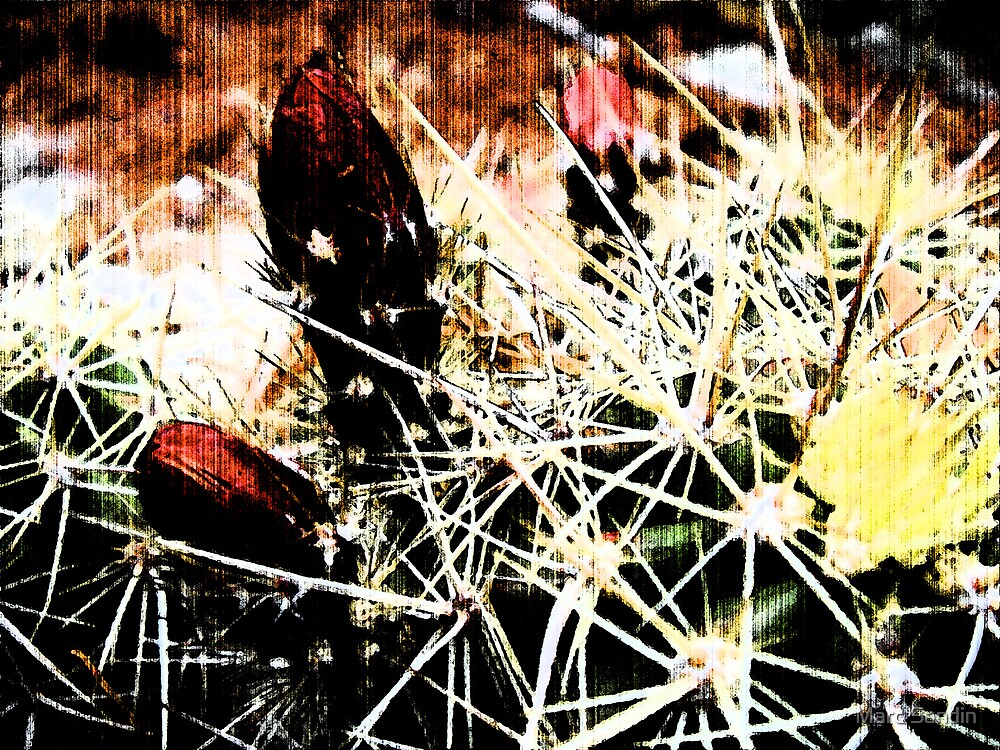 Spine Budding Bloom by Marc Sandin