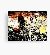 Spine Budding Bloom Canvas Print