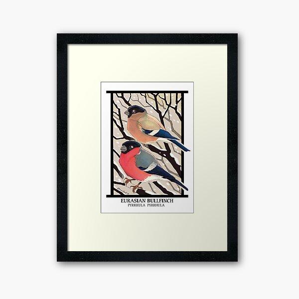 Vintage Winter Birds - Bullfinches Framed Art Print
