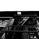 Escape to Where by Joseph  Tillman