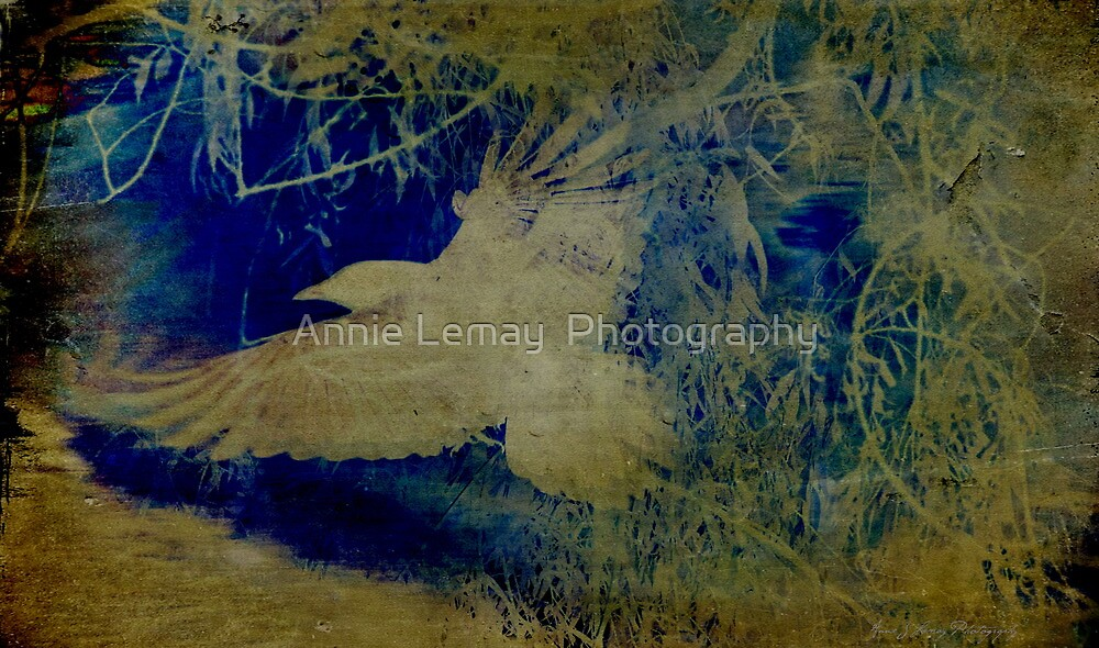 A Touch of Japan by Annie Lemay  Photography