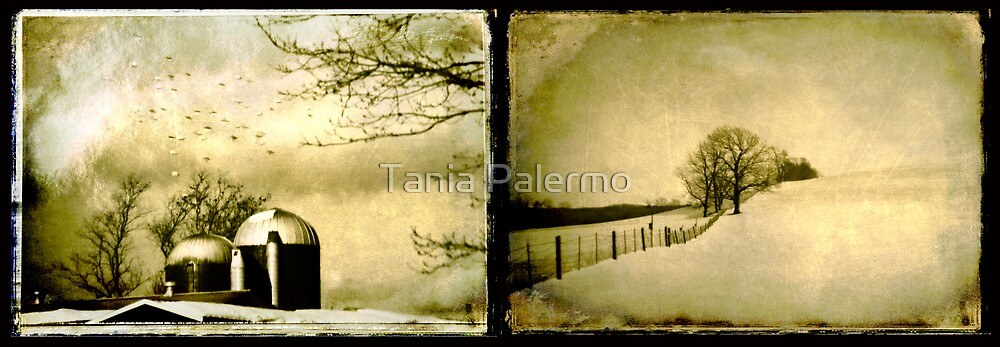 and then tomorrow came by Tania Palermo