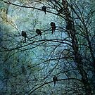 Birds of a feather by John Rivera